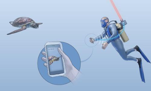 A scuba diver sends sea-life shots to the surface using an aquatic Internet service.